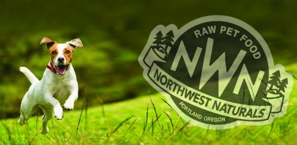 Puppy in field - NWN Logo