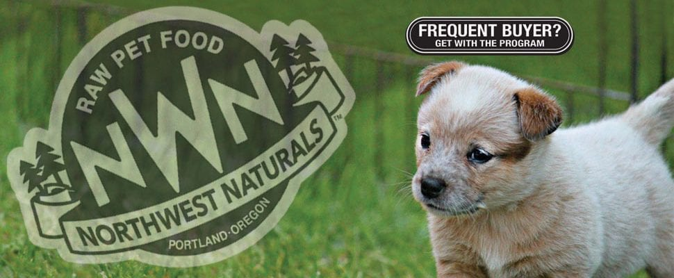 Puppy in the grass - Northwest Naturals
