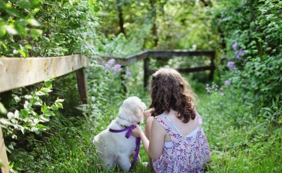 little girl in english garden with puppy - purples and greens and an old wooden fence - pet pictures