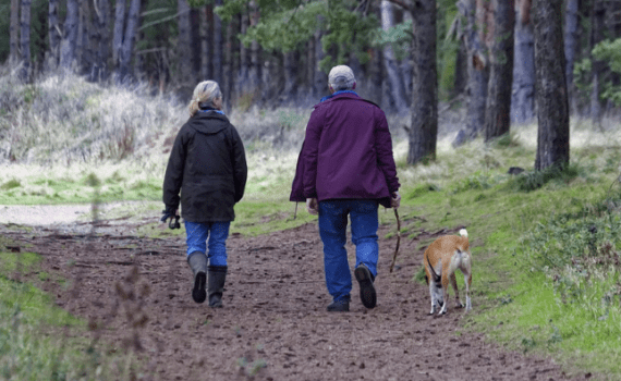 seniors man and woman walking side by side outdoors with man walking dog
