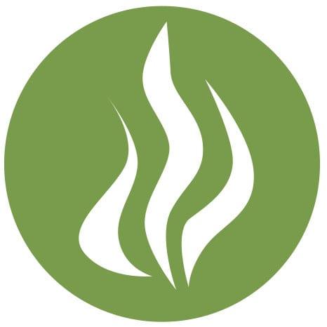 Kelp Icon
