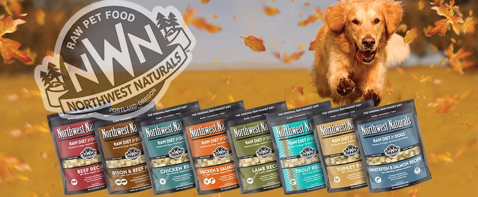 Big Variety Raw Dog Food