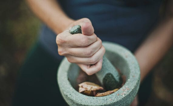 Crushing plants with a mortar and pestle